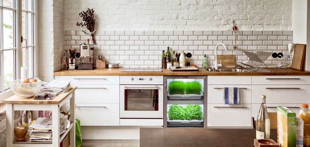 Urban Herbs Cultivator in Kitchen Modern Kitchen growing herbs indoors herb garden window herb garden kitchen herb garden growing herbs herb planter indoor