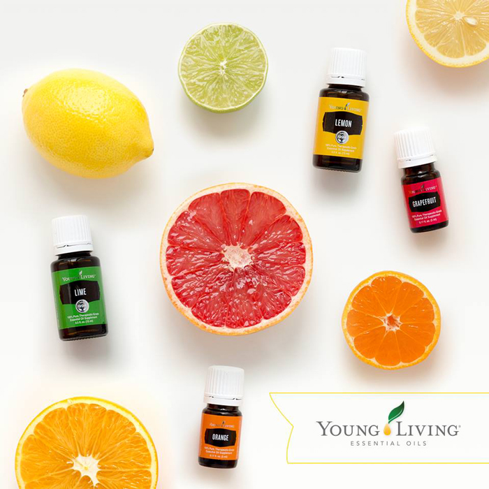 Young-Living-Essentials-Oils-Citrus-Vitality-Aromatherapy-for-home-Orange-Lemon-Grapefruit