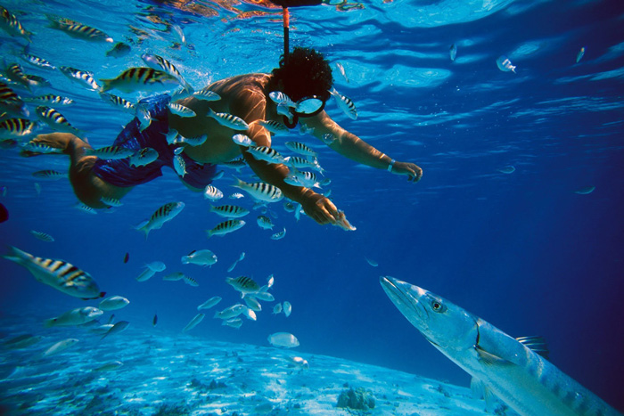 Snorkeling-in-Okinawa-Japan-solo-travel-companies-places-to-travel-alone-solo-female-travel-solo-travel-destinations