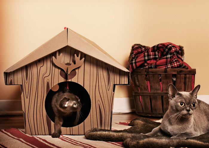 Cardboard-Cat-Indoor-Cabin-House-Christmas-Pet-House-Two-Grey-Cats