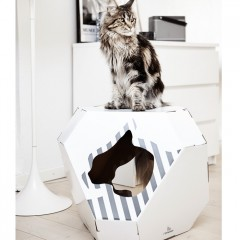 Indoor and Outdoor Pet Houses
