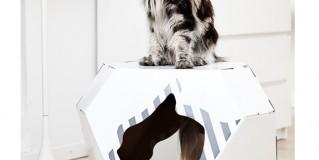Indoor and Outdoor Pet Houses