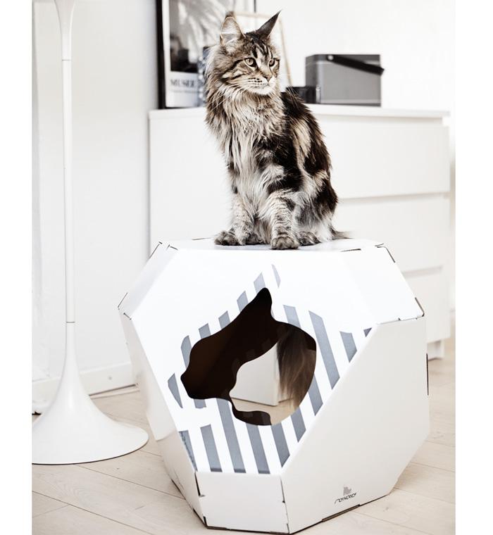 Cardboard-Cat-Indoor-House-Reversible-Pet-House-White-Cat-House-Beautiful-Long-Hair-Cat