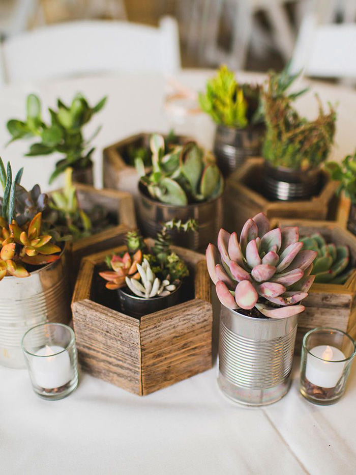 Potted-Succulents-Natural-Home-Decor-home-decor-items-natural-décor-living-room-decor-home-accents-home-decor-accessories