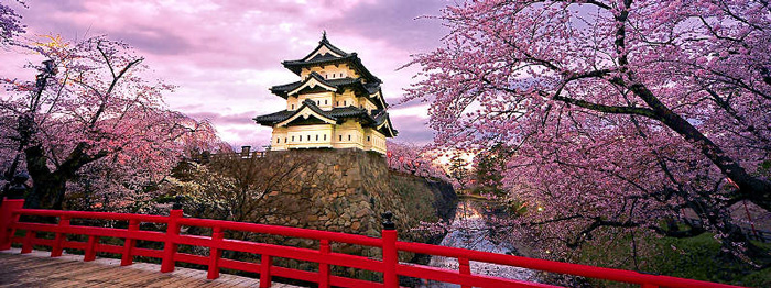 japanese-cherry-blossoms-japanese-cherry-blossom-tree-spring-break-vacation-deals-spring-break-family-vacations-spring-travel-spring-break-trips