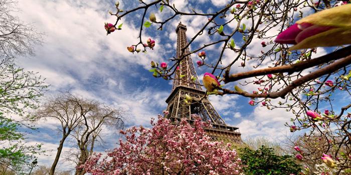 paris-spring---spring-trip-ideas