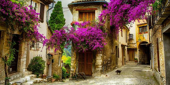 provence-France--spring-break-trip-ideas-cherry-blossom-tree-spring-break-vacation-deals-spring-break-family-vacations-spring-travel-spring-break-trips