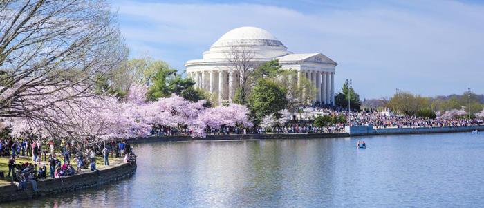 washington-dc-spring-travel-cherry-blossom-tree-spring-break-vacation-deals-spring-break-family-vacations-spring-travel-spring-break-trips