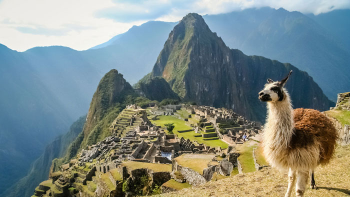 Lama-and-Мachu-Picchu-in-Peru-South-America-Mountain-Vacations