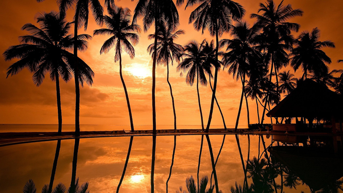 Sunset-Beach-Hawaii-Palms-at-sunset
