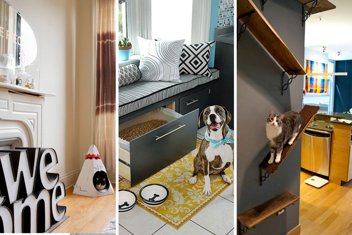 home-for-pets