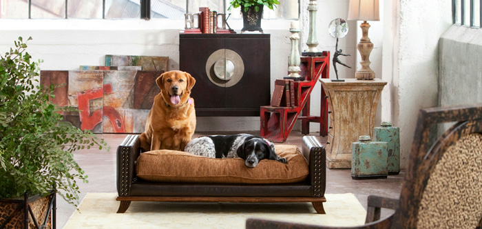 modern-dog-bedroom-ideas-for-dog-friendly-homes