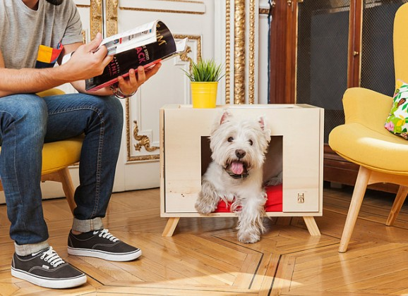 Pet Friendly Interior Tips for Your Home