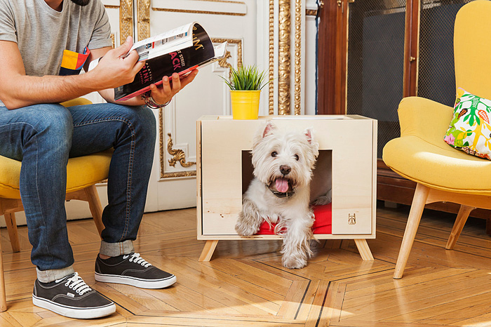 renting-with-pets-wooden-dog-home