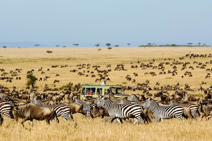 serengeti-migration-best-african-countries-to-visit
