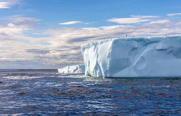 Antarctica-Penguins-on-big-Iceberg