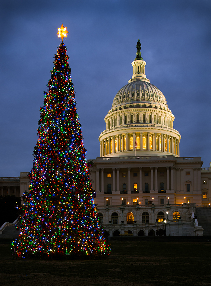 Capitol-Christmas-Tree-Washington-DC