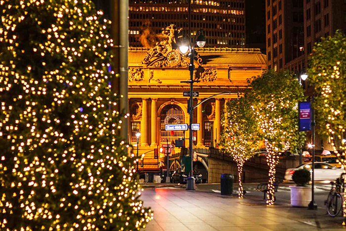 Christmas-Trees-on-Park-Ave