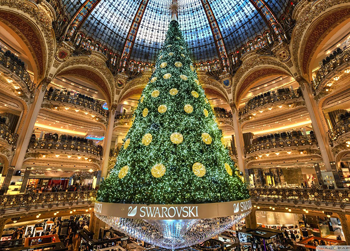Indoor-Christmas-Tree-in-Paris