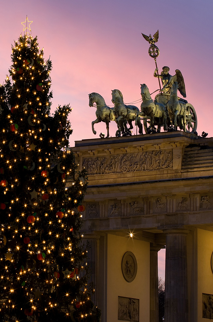 Large-Outdoor-Christmas-Tree-Berlin