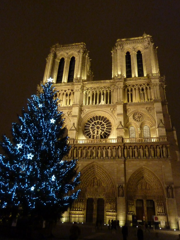 Outdoor-Christmas-Tree-in-front-of-Notre-Dame-Paris