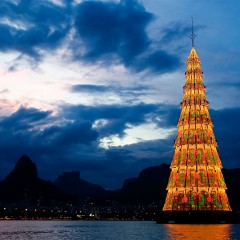 The Most Famous Outdoor Christmas Trees