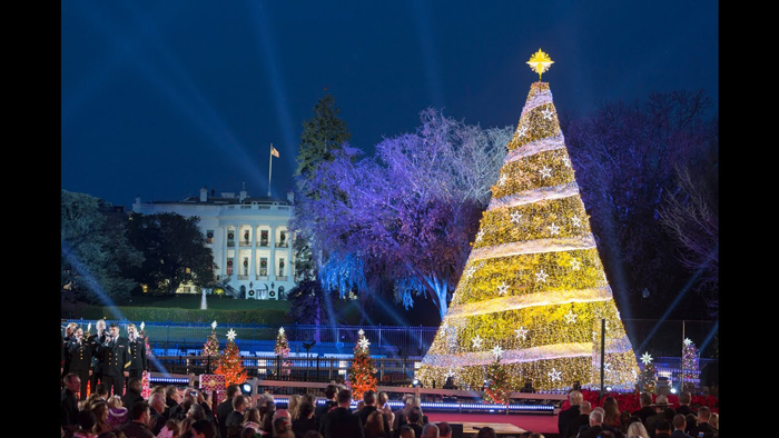 washington-dc-christmas-tree