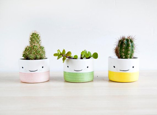 Eco-Friendly-Christmas-Gift-Ideas-potted-plant