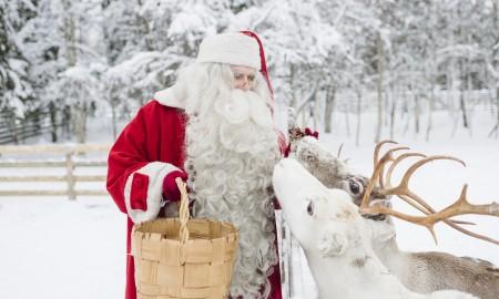 Santa Claus Feeding His Deer