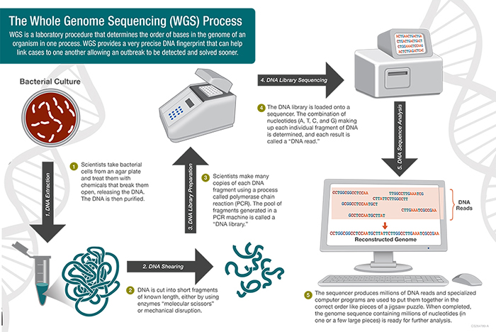 Genome-Sequencing-Top-Health-Innovations-for-2018