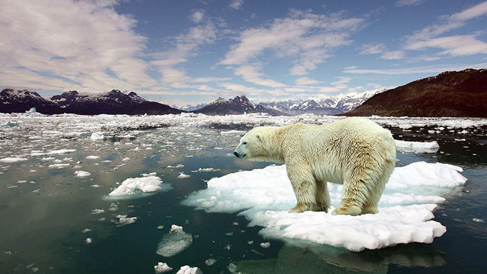 Ice-melting-Global-Warming-and-Its-Effects-on-Us