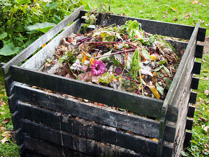 Make-a-Compost-save-Planet-Earth