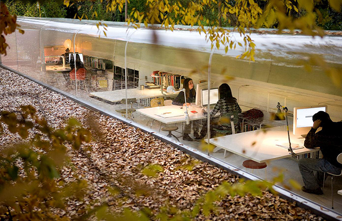 Selgas Cono office in the forest