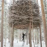 Back to Nature – Beautiful Tree Houses