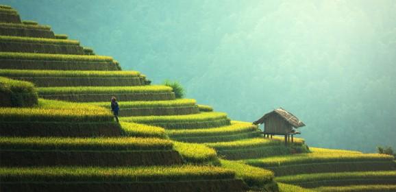 Top Hidden Places in Bali
