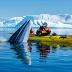 The Most Interesting Kayaking Trails