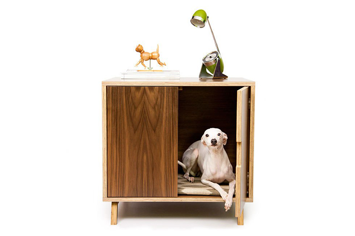 Dog sitting in a wooden cabinet house