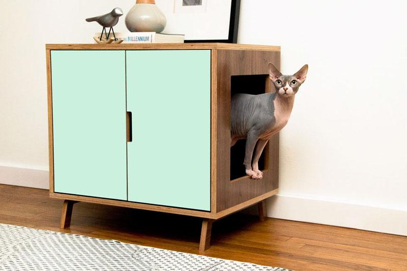 Dog in modern cabin pet house