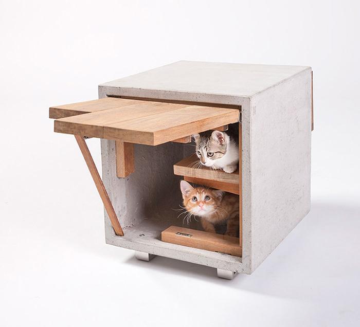 Two kitties inside coffee table pet house