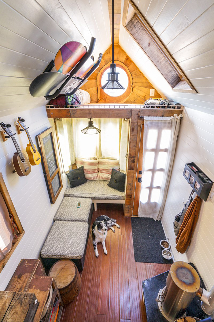 Dog sitting in tiny cozy house with snowboards on the ceiling
