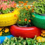 Low Cost Ideas For Summer Vibe in Your Yard