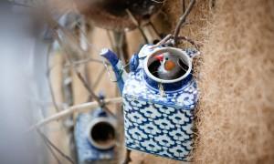 Amazing teapot birdhouses