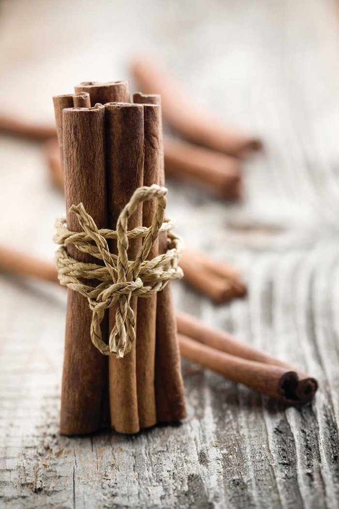Cinnamon sticks tied up with a lace