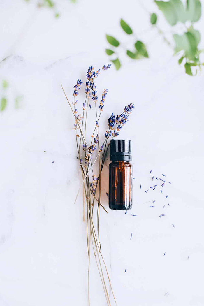 Small bottle of Lavender essential Oil with Lavender blade