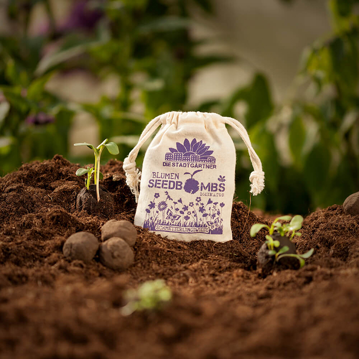 Seed bombs in a garden for saving bees