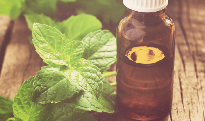 Peppermint essential oil in a small bottle with Peppermint leaves next to it