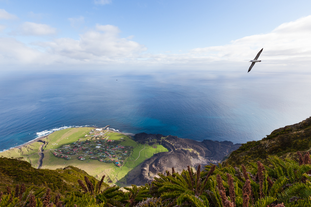 Tristan island with a view on its nature, the ocean and a bird flying in the sky