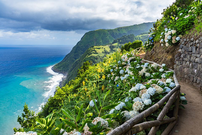 Walking path with a nice view on the ocean and surrounded with nature and flowers