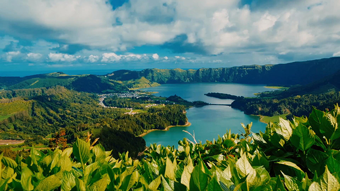 Landscape of forests, water and plants in the Azores
