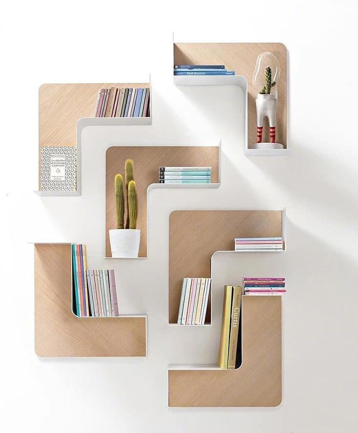 Books and cactus on a shelf